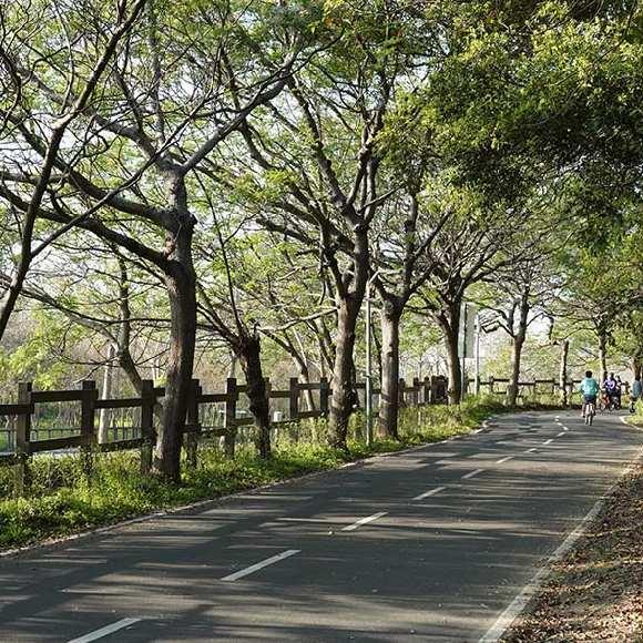 東豐自行車綠廊-鐵馬道景點-騎腳踏車好去處