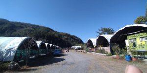 南投 松林農場露營區-平價溫泉露營